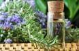 Как применять лавровый лист в лечебных целях: рецепты