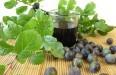 Вино из сока - как приготовить из забродившего яблочного, виноградного или березового сырья