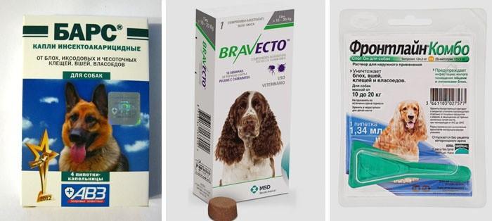 Средства защиты от насекомых для собак