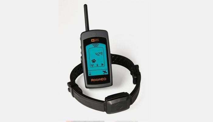 Ошейник с GPS для собак