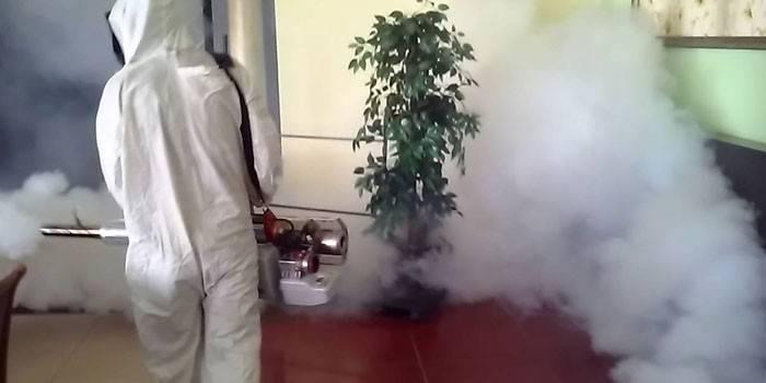 Горячий туман от тараканов