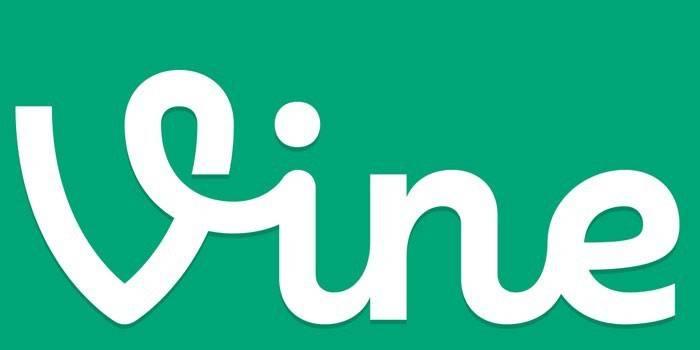 Логотип программы Vine