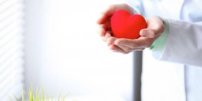 Сердце на ладони