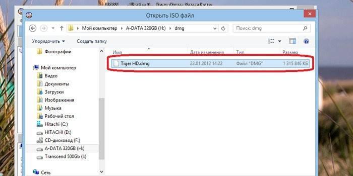 Файл DMG в каталоге Виндовс