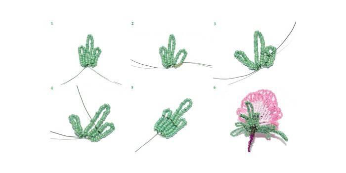 Плетение чашелистика