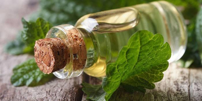 Эфирное масло в баночке и листья мяты