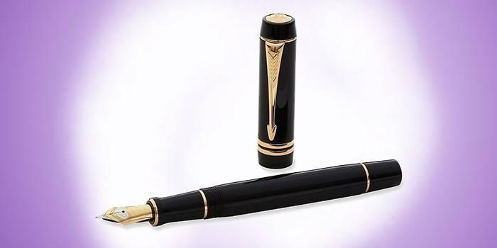 Перьевая ручка с поршневым контейнером Parker Duofold F77