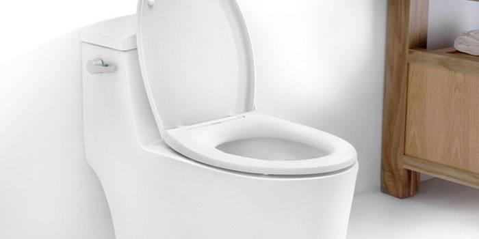 Унитаз в туалетной комнате