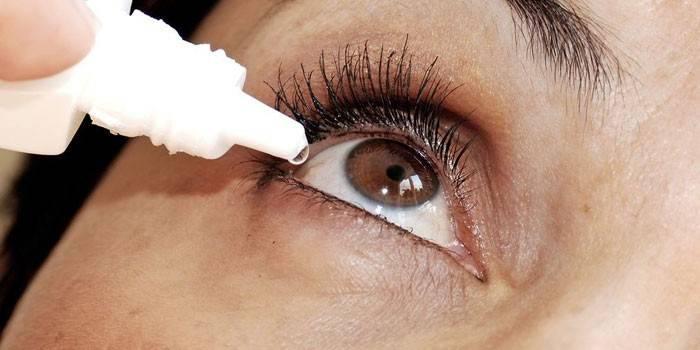 Лечение грибка глаз